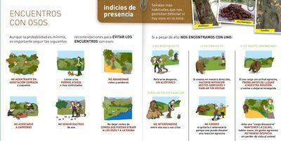 Ir a https://escalerilla.barruelo.com/descargas/actuacion-frente-oso.pdf